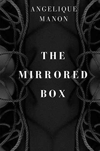 THE MIRRORED BOX